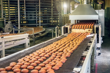 Production line of baking cookies. Biscuits on conveyor belt in confectionery factory, food industry