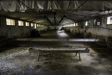 Old abandoned farm