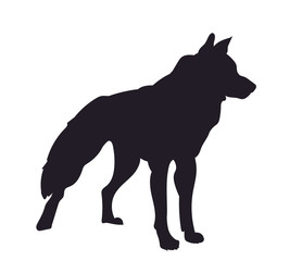 dog stands, silhouette, vector
