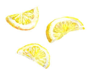 Watercolor painted lemon slices