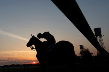 A horse and its rider are seen in silhouette before training at Belmont Park racetrack in Elmont