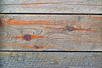 Bright colored texture of wooden boards