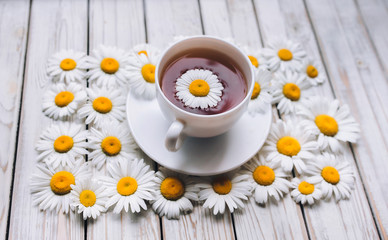 Cup of beauty chamomile tea with fresh daisies. White fresh flowers on a light gray vintage wooden background. The concept of a sedative.