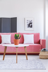 Plant on wooden table in front of pink sofa with white pillows in living room interior. Real photo
