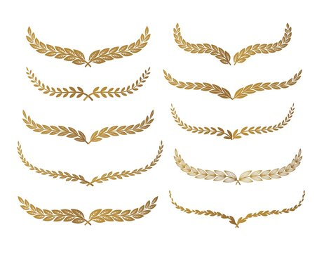 Gold laurel set vector