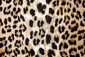 Modern stylish texture. The tiger cotton chintz.