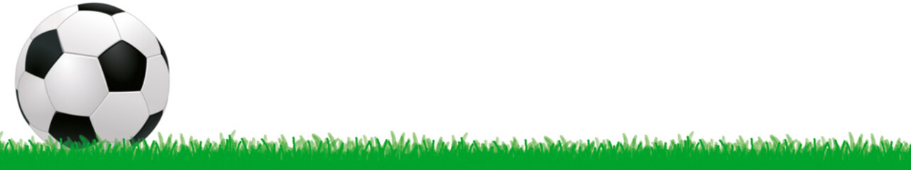 Simple standard football with grass as a design element