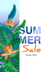 Summer Sale banner design template with Tropical palm leaves, plants.  Negative space trend.  Summer placard poster flyer invitation card.