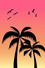 Palmen mit Voegel