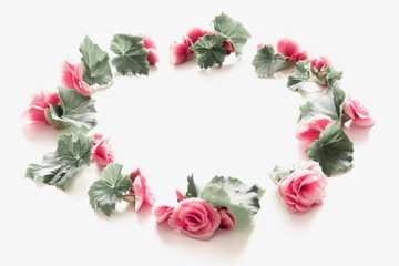 Flowers composition. Wreath made of light pastel pink flowers on white background. Flat lay, top view, copy space