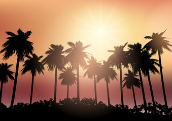 Palm tree silhouettes against a sunset sky