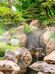 Japanese garden in fog at summertime