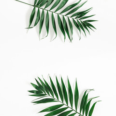 Tropical palm leaves on white background. Summer concept. Flat lay, top view, copy space, square