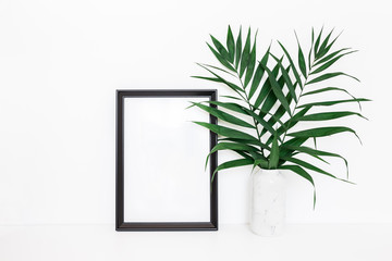 Tropical palm leaves, photo frame on white background. Summer concept. Front view, copy space