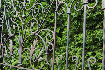 Decorative elements of a metal forged fence