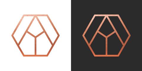 Copper geometric hexagon Logo Shape. Vector Icon.