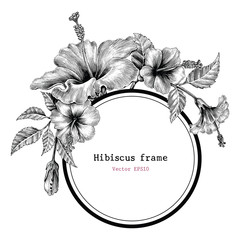 Hibiscus flower frame hand drawing vintage clip art
