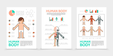 Flat Human Body Posters