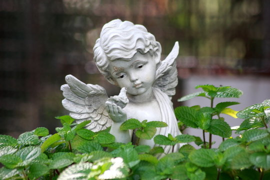 The white angel statue in garden.