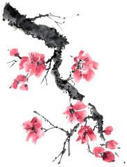 Blossom sakura tree