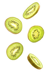 sliced flying kiwi isolated on white background with clipping path. cut kiwi fruit in pieces isolated on white background. Levity fruit floating in the air.
