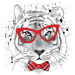 Tiger portrait with glasses and tie. Vector illustration.