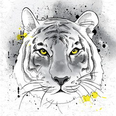 Image of portrait a tiger. Vector illustration.