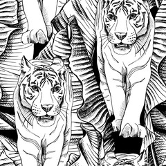 Seamless pattern with image of a tiger walking in banana leaves. Vector black and white illustration.
