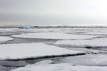 Ice-floes and Water, outside Spitsbergen. Svalbard, Norway