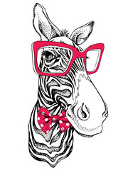Zebra portrait in a polka-dot tie with a red glasses. Vector illustration.