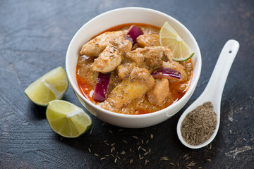 Thai massaman curry with chicken meat served in a white bowl, studio shot, selective focus