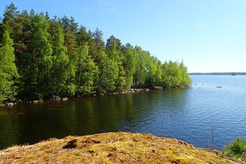 Finnish summer landscape