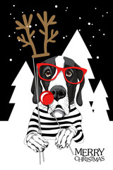 Christmas card. Great Dane Dog in a striped cardigan and with a red glasses, horns and a nose of a deer photo booth props. Vector illustration.