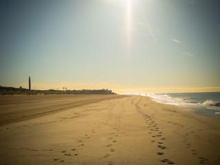 Gava in Barcelona beach at sunrise