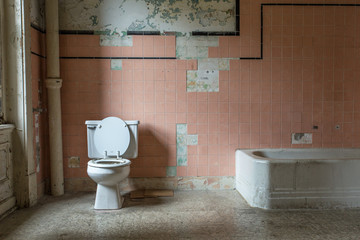 Pink tile and toilet