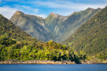 Rainforest and mountain range at Doubtful Sound