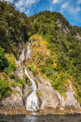 'The water of life' spring at Doubtful Sound in Fiordland National Park, New Zealand, South Island