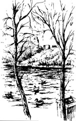 vector background view of beautiful mountain landscape with alpine lake, ducks and spruce forest, sketch hand drawn ink shading graphics