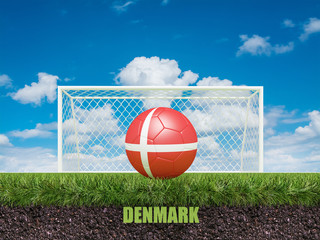 Denmark football  on football or soccer field ,3d