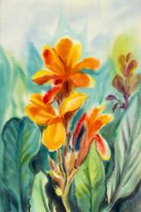 Watercolor painting original landscape orange color of Canna lily flowers