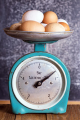 retro scales and eggs