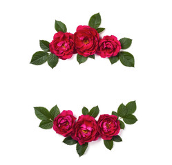 Floral frame wreath made of pink rose flowers and leaves isolated on white background. Flat lay. Top view.