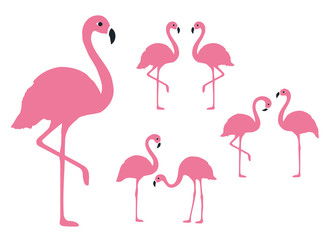 Flamingo Set. Isolated. Vector.