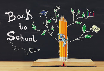 Bck to school concept. tree of knowledge sketch and pencils over open book in front of classroom blackboard.