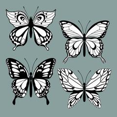 set decorative butterflies