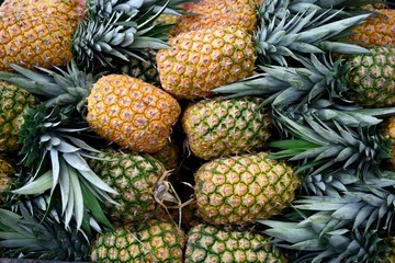 Stack of fresh ripe pineapples in a fruit market in Costa Rica, Central America.