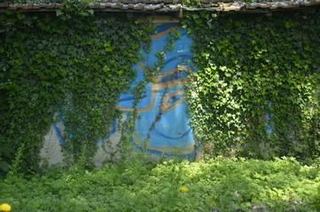 graffiti, art urbain minéral   et nature végétale