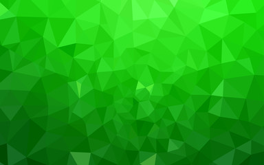 Light Green vector low poly texture.