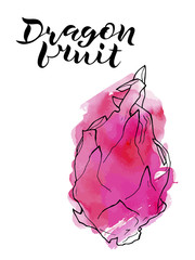 vector line illustration of dragon fruite with pink watercolor abstract background and handwritten lettering. Isolated dragon fruit for label, menu, icon, banner.