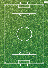 Soccer field or football field pattern and texture for background. Vector.